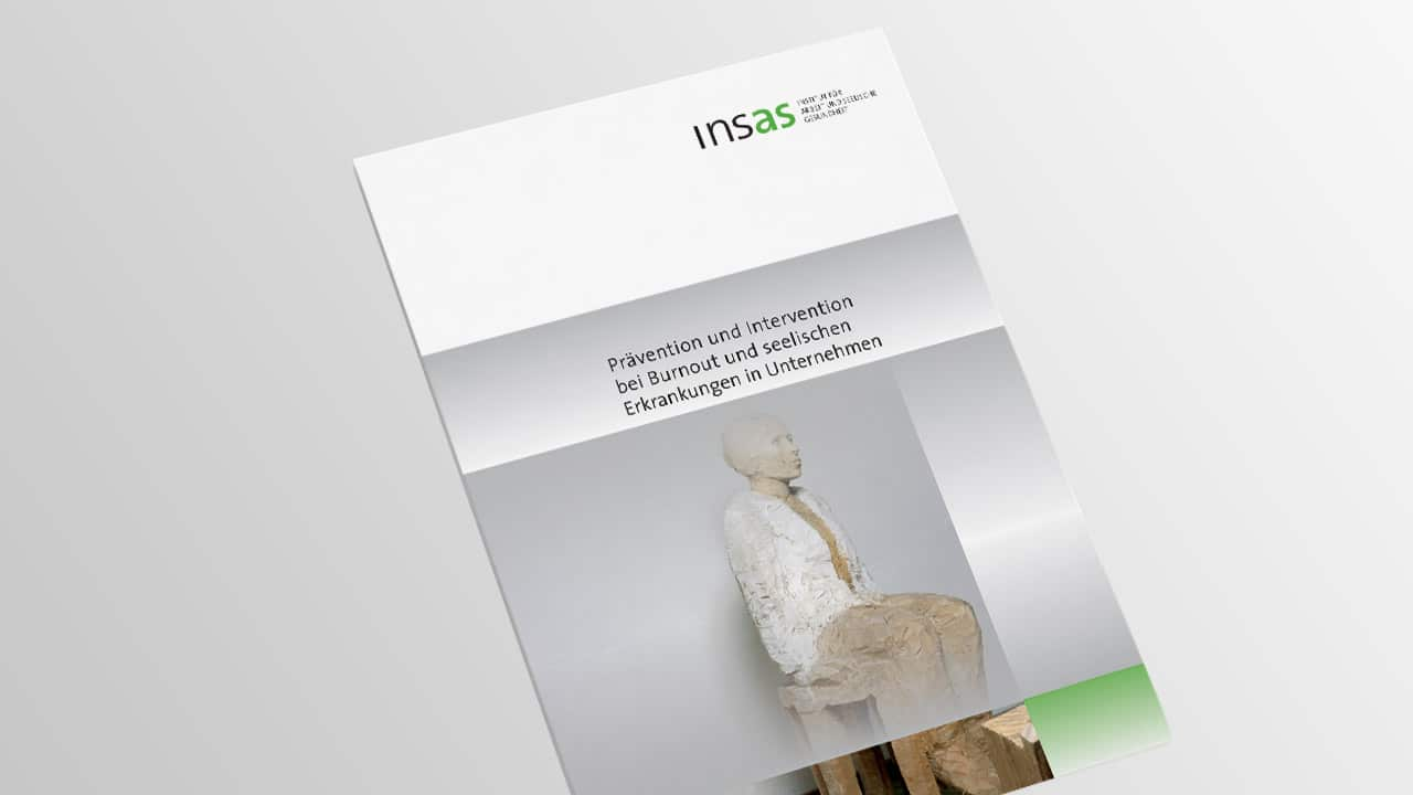 Broschüre insas Institut, Grafikdesign Broschüre München