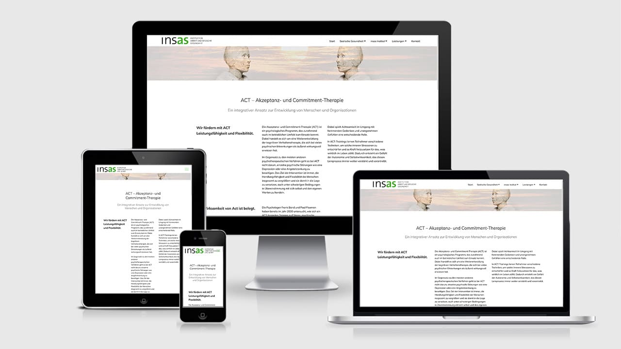 Website insas-Institut, Website Konzept München