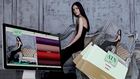 Webdesign und Printdesign, Grafik Design München